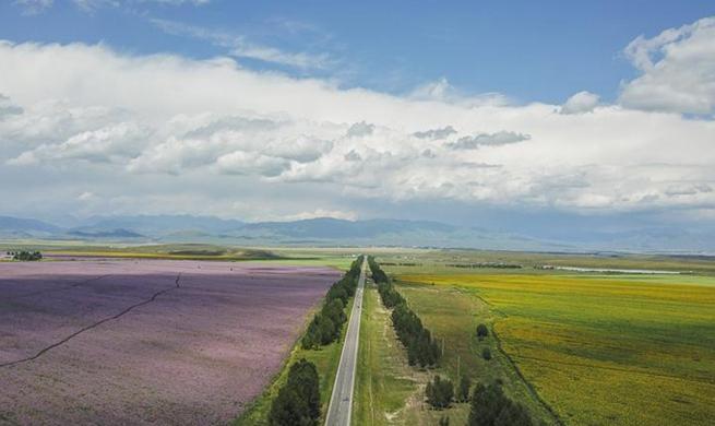 Xinjiang speeds up transportation, logistics development