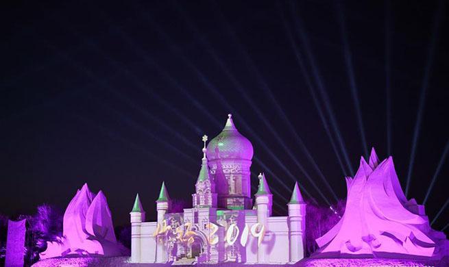 Sun Island Int'l Snow Sculpture Art Expo held in NE China's Harbin