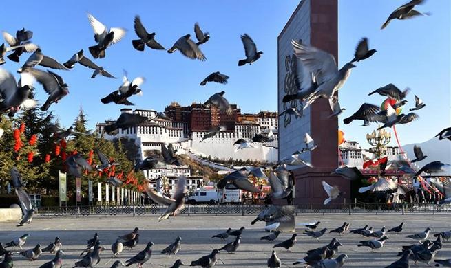 China Focus: Tibet marks 60th anniversary of democratic reform