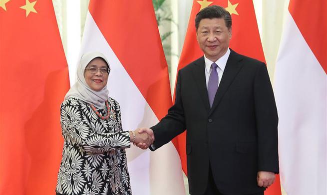 Xi meets Singaporean president