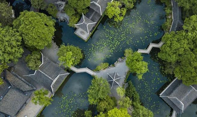 Eco-China: Jiangsu makes great efforts to promote green development