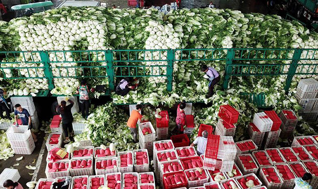 Supply of vegetables maintains stable in Shouguang after Typhoon Lekima