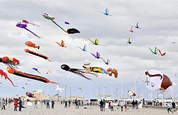 In pics: 20th Dieppe Int'l Kite Festival