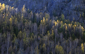 Autumn scenery of Keketuohai national geopark in NW China's Xinjiang