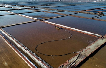 Salt harvested at Daqinghe sea salt flat in Tangshan, China's Hebei