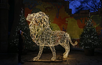 """""""Christmas at London Zoo"""" launched in Britain"""