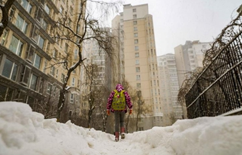 Snow falls in Urumqi, NW China's Xinjiang