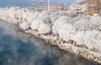 Rime scenery at bank of Songhuajiang River in Jilin