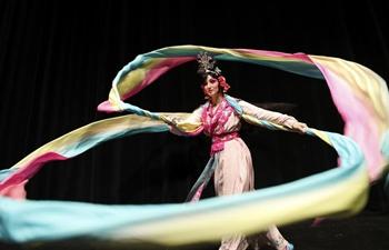 Feature: An American lady's unbelievable journey of Peking Opera