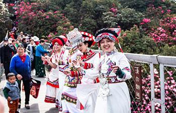 Azalea scenic spot in Bijie City, SW China's Guizhou