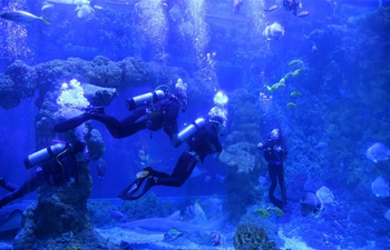 Chinese NPO helps autistic patients with diving treatment