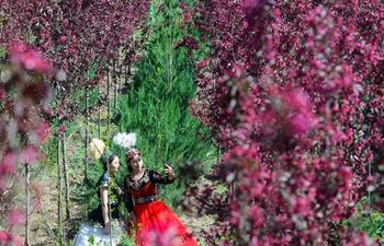 Spring scenery of Hutubi County, NW China's Xinjiang