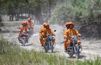 Firefighters inspect desert poplars to prevent forest fire risks in Xinjiang
