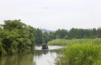In pics: Xiazhu Lake National Wetland Park in east China's Zhejiang