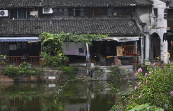 Scenery of Xinshi Town in E China's Zhejiang