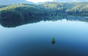 In pics: Hongcun scenic spot in Yixian County, China's Anhui