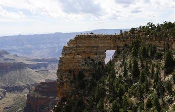 Scenery of Grand Canyon in U.S.