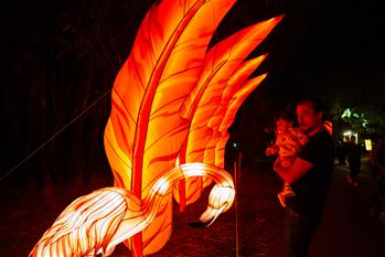 People view light installations during Moonlight Forest Magical Lantern Art Festival