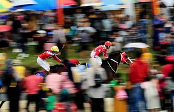 Traditional horse ride held at Bukittinggi region, Indonesia