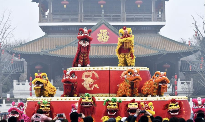 Cultural activities held across country to celebrate Chinese New Year