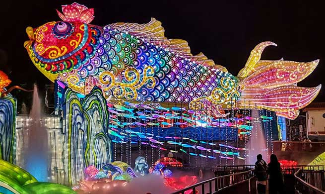 Lantern fair held in Zigong, southwest China's Sichuan