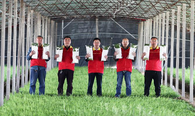 Common Chinese people work hard to fulfill Chinese Dream in Shandong, E China