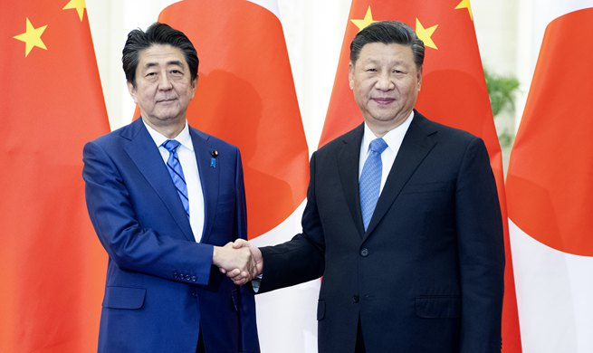 China-Japan ties face important development opportunities: Xi
