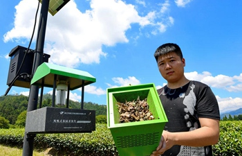 Green pest control technologies adopted in tea gardens in SE China