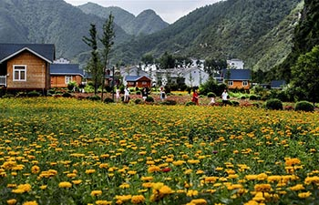 Villagers encouraged to start homestays with idle rooms to increase incomes in China's Shaanxi