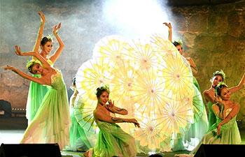Chinese art performance amazes Tunisian audiences