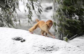 Winter scenery across China