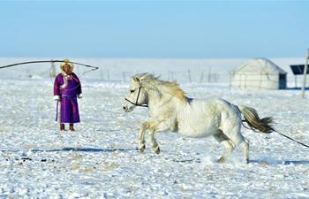 Herdsmen demonstrate horse lassoing in north China's Inner Mongolia