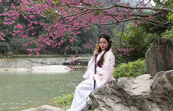 People pose for photos with cherry blossoms in China's Fujian