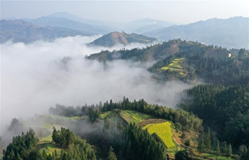 Scenery of mist-enveloped mountain in Fulu, S China's Guangxi