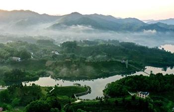 In pics: tea garden in Youfangdian Township of Jinzhai County in China's Anhui