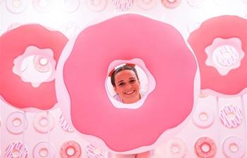 "In pics: ""Sweet Art Museum"" installation art exhibition in Sao Paulo"