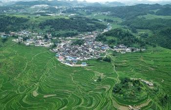Scenery of Gaoyao terraced fields in SW China's Guizhou