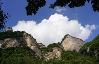 Scenery of Qingfengxia forest park in Shaanxi