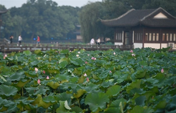 In pics: West Lake in Hangzhou, east China's Zhejiang
