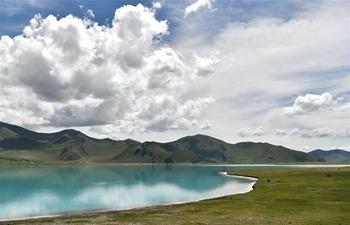 Scenery of Yamzbog Yumco Lake in SW China's Tibet