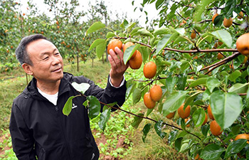 Pic story: From veteran to experienced farmer