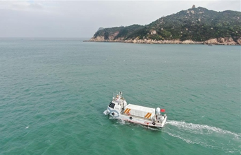 China's homemade cargo ship witnesses maiden voyage