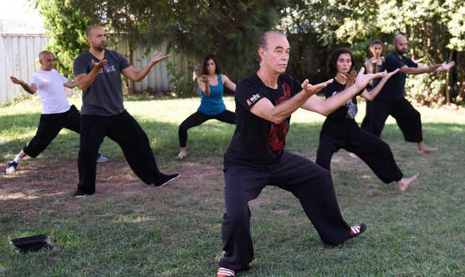 Feature: More and more Turks practice Tai Chi to ease stress of city life