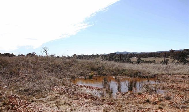 Australia suffers through its worst drought in decades