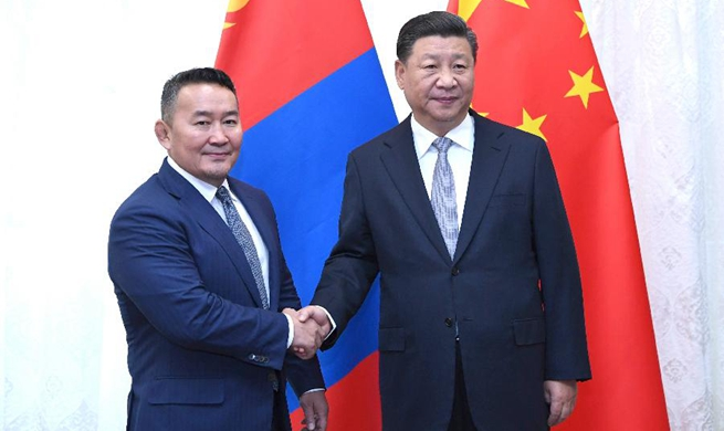 Xi meets Mongolian president on ties