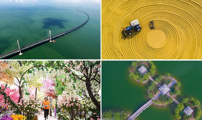 Weekly choices of Xinhua photo