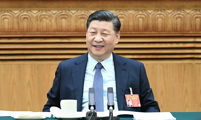 Xi stresses implementation of rural revitalization strategy
