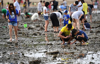 Visitors join in beachcombing for shells and crabs in China's Hainan