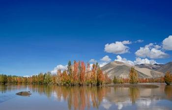 Autumn scenery along Yarlung Zangbo River in SW China's Tibet