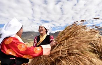 Scenery of autumn harvest across China